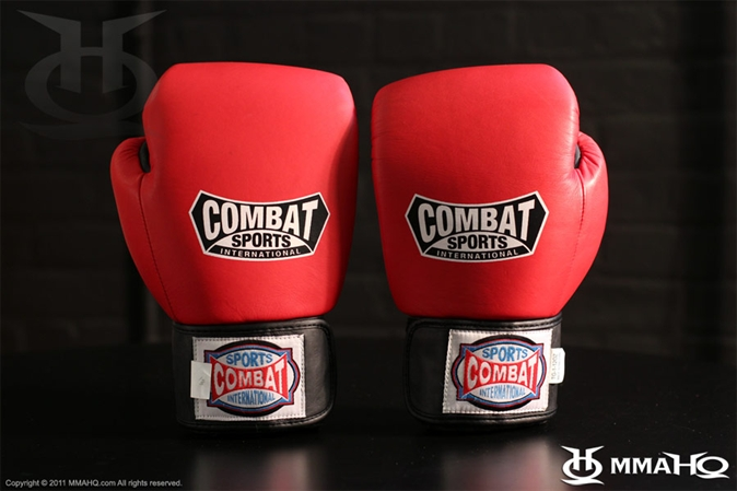 Combat Sports Intl Thai Gloves